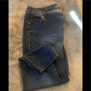 Lane Bryant skinny genius fit jeans